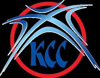 Basketball_Federation_of_Serbia_logo.svg.jpeg